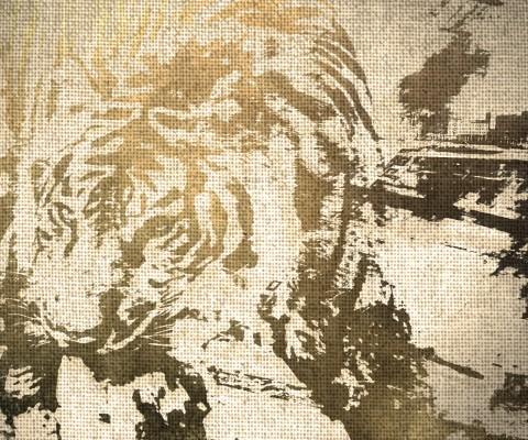 Tiger in city